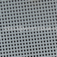 Polyester conveyable Mesh riem