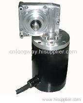 PM DC WORM GEAR MOTOR