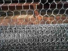 Hot-dip Galvanzied Hexagonal Wire Mesh