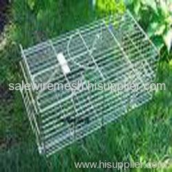 raccoon cage trap