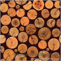 Ceramic Art Tiles, Art Floor Tile, Art Wall Tile