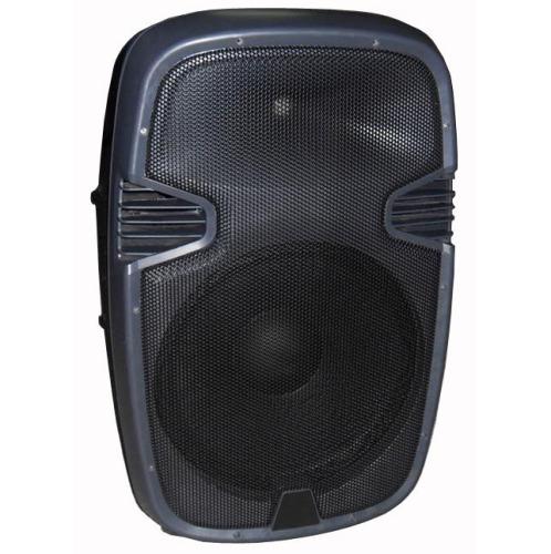 "15"" B series plastic speaker box"