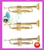 Trumpet Trombone Tuba Brass Instrument