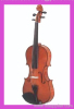 Violin Viola String Instrument Guitar Double Bass