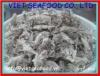 Loligo Squid