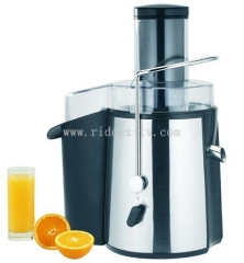 Fruit Power Juicer