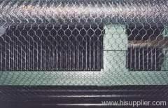 hexagonal chicken wire meshes