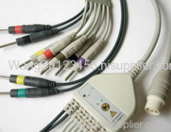 NEC EKG cable with 10 leads-
