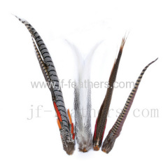 Feather Material