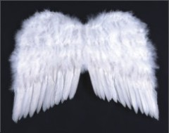 White Angel Feather Wing
