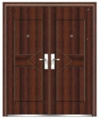 door steel door