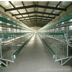 A and H type Chicken Cage
