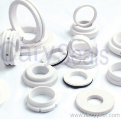 Ceramic mechanical seal Ring