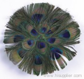 Fashionable Feather Fascinators