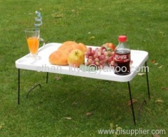 Folding Outdoor Plastic Picnic Table