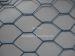 hex netting wire