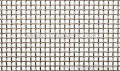 electro Galvanized Square Wire Mesh cloth