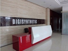 Digisynthetic Co., Ltd.