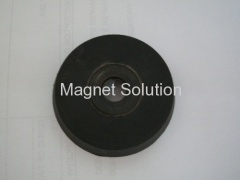 rubber insert magnets