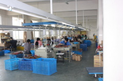 Fenghua E-Lion Electronics Co., Ltd.