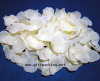 Silk Rose Petal / Wedding Petals