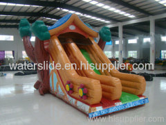 house slide/ bouncy castle slid