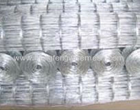 Hot dipped Galvanized After Welding Wire Mesh