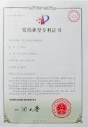 D1002 patent certificate