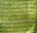 Greenhouse shade net