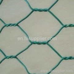 green hexagonal wire meshes