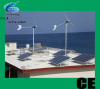 4KW Wind Solar system(withCE,ISO),Green power system
