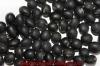 Tamba black Bean