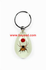 real spider bug lucite keychains,bug amber key ring,so cool gift