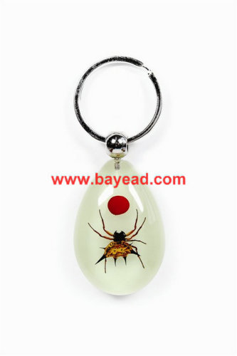 real spider bug lucite keychains 16d8e12bc23f