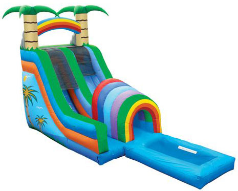 tropical tunnel water slide with pool