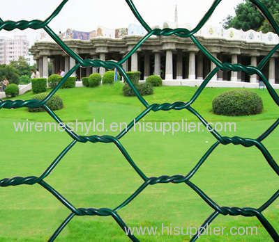 PVC Coated hexagonal Wire Mesh Netting
