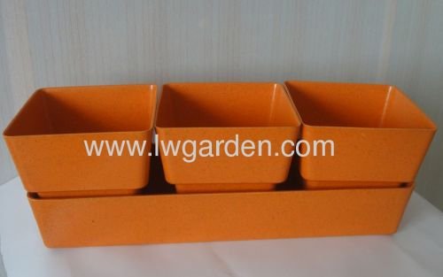 Biodegradable herb planter