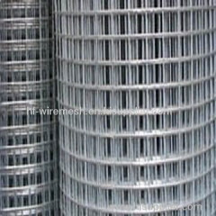 coild galvanized welded wire mesh