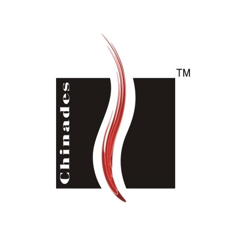 Chinades Lighter CO.,LTD