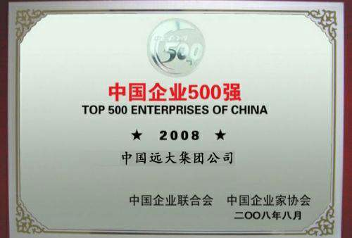 Certificate Top 500 China Enterprises