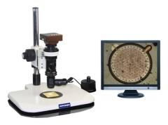 stereo microscopy