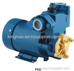 220V/50Hz 370 watts 0.5hp Peripheral Pump