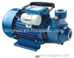 0.37/0.55/0.75 kw 0.5/0.75/1 hp 110V, 60Hz Peripheral Pump