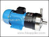 CQ Series Magnetic Drive Pump