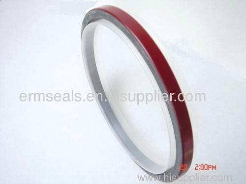 OEM:3020183/3004317 CUMMINS(NT85) PTFE OIL SEALS from China