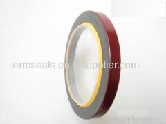 PTFE LIP OIL SEALS 3016787
