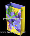 Colorful standard gift bag