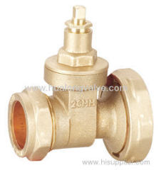 Pump gate valve CxF