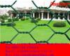Hexagonal Wire Mesh Rolls
