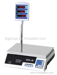 electronic computing scale with pole